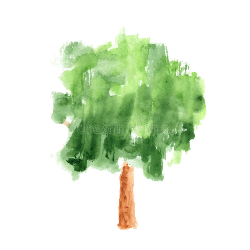 Watercolor tree on white background vector illustration