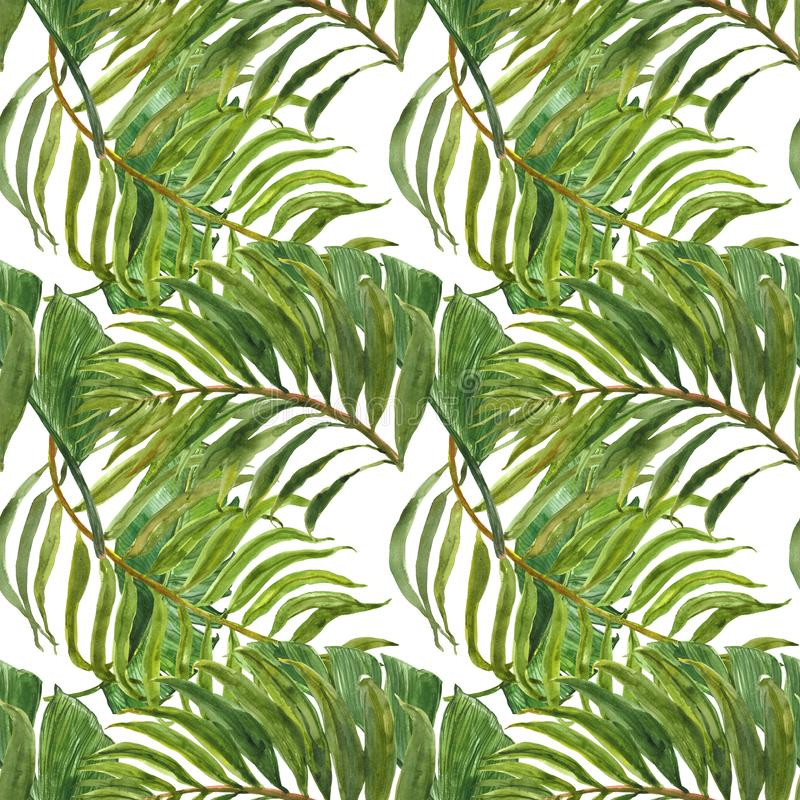 Watercolor trendy tropical print. Seamless pattern with exotic green leaves. Hand painted palm leaf on white background. Botanical royalty free illustration