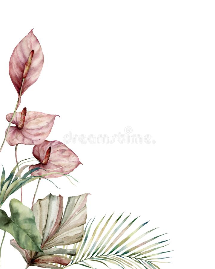 Free Watercolor Tropic Card With Anthurium And Palm Leaves. Hand Painted Frame With Flowers And Plant Isolated On White Royalty Free Stock Photos - 177084048