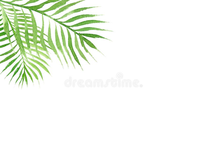 Watercolor tropical border frame with palm tree leaves isolated on white background royalty free illustration