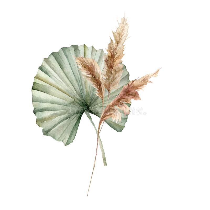 Free Watercolor Tropical Bouquet With Dry Leaves And Pampas Grass. Hand Painted Exotic Composition With Leaves Isolated On Royalty Free Stock Image - 182430876