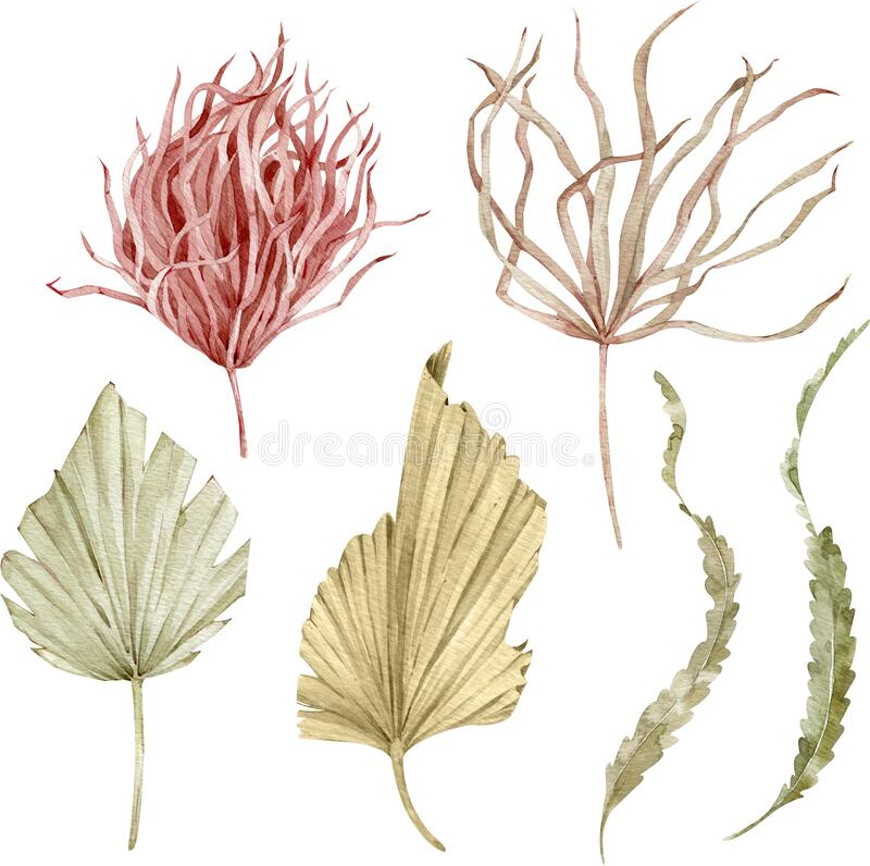 Dried Grass Clipart | Free Images at Clker.com - vector clip art online,  royalty free & public domain