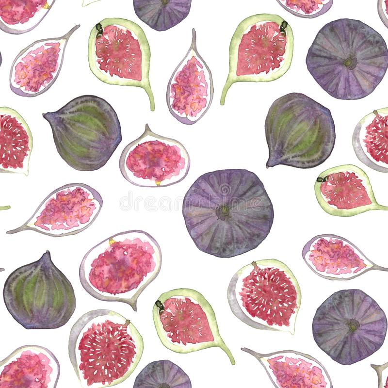 Watercolor tropical figs fruits pattern vector illustration
