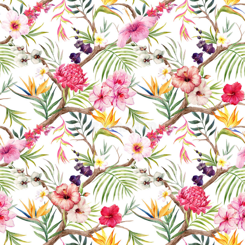 Watercolor tropical floral pattern vector illustration