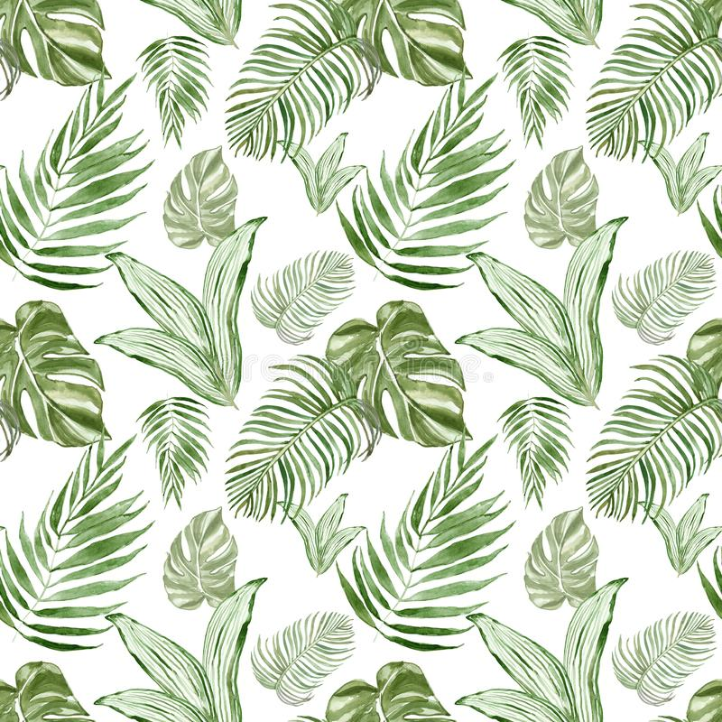 Watercolor tropical leaves botanical seamless pattern with plants. Beautiful green repeat print. royalty free illustration