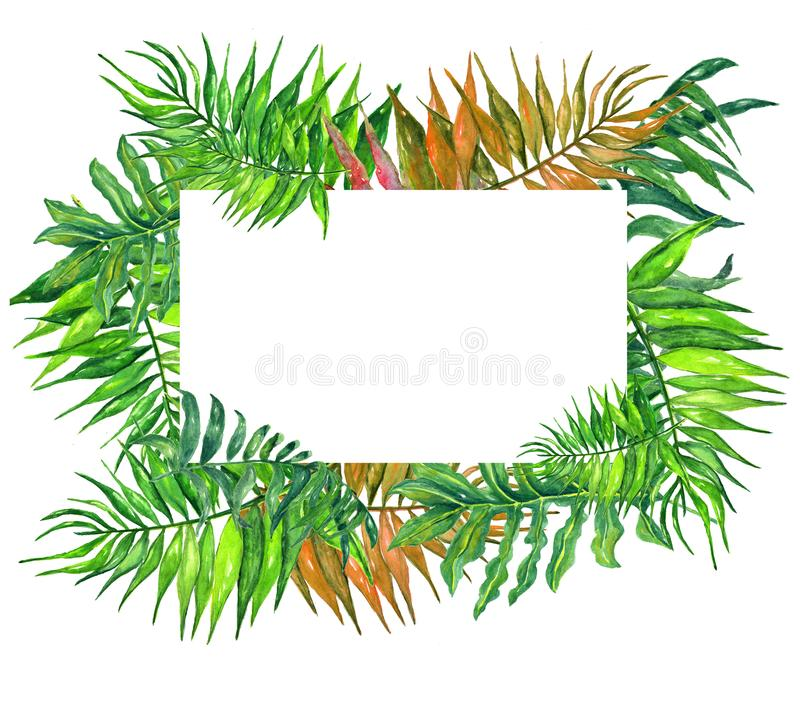 Watercolor tropical leaves and flowers wreath!Watercolor exotic floral card. Hand painted tropic frame with palm tree leaves and t stock photos