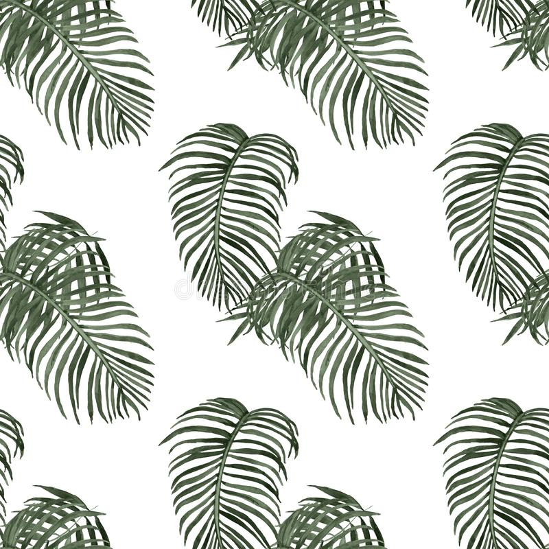 Watercolor tropical leaves seamless pattern. Exotic green palm foliage on white background. rainforest illustration vector illustration