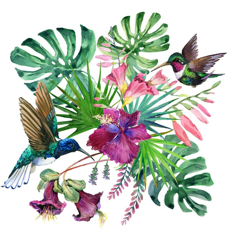 Free Watercolor Tropical Narute Illustration Royalty Free Stock Photo - 112108845