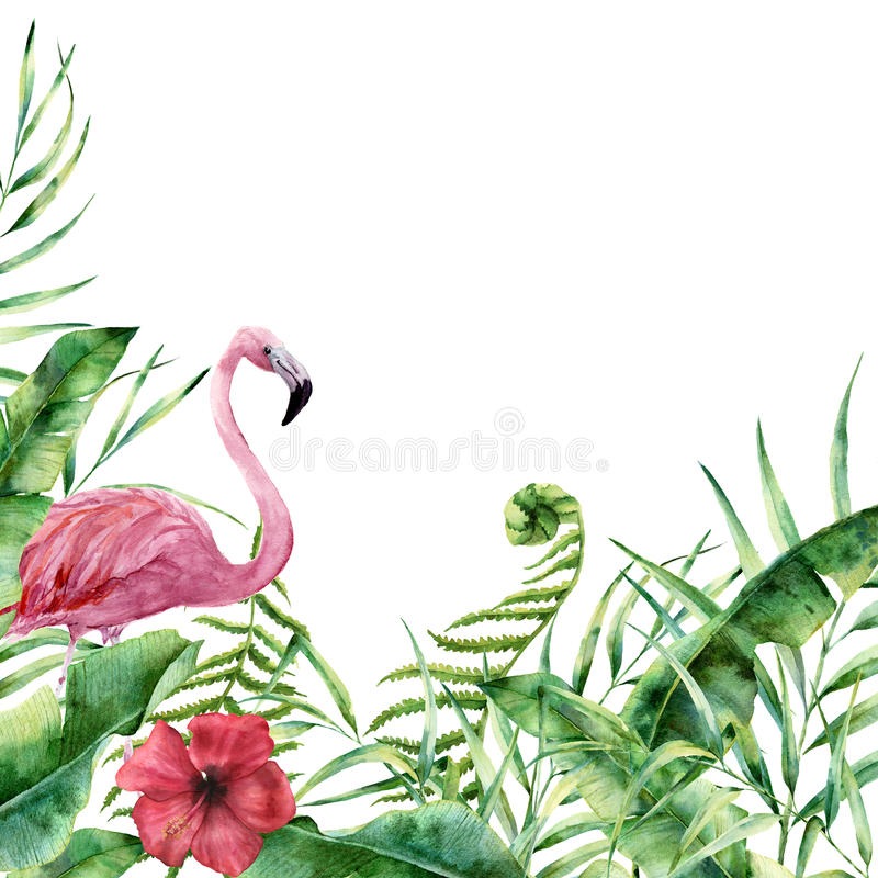 Free Watercolor Tropical Nature Card. Hand Painted Floral Frame With Palm Tree Leaves, Fern Branch, Banana And Magnolia Royalty Free Stock Images - 93065989