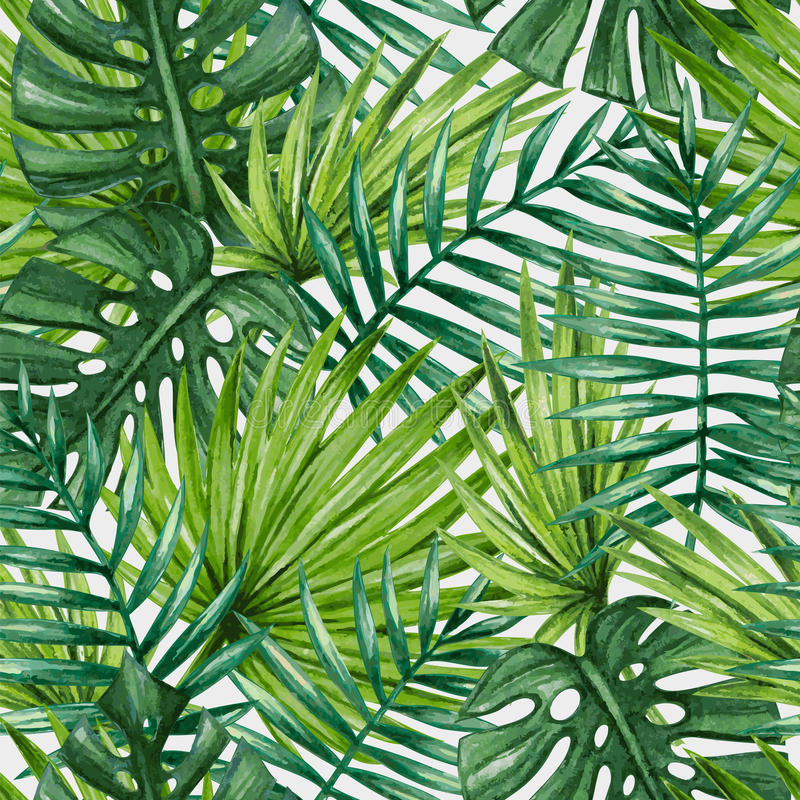 Watercolor tropical palm leaves seamless pattern. royalty free illustration