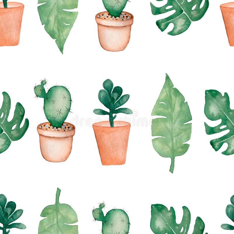 Watercolor tropical palm,monstera leaves with cactus in pots and succulents seamless pattern.Hand painted. Tropic summer time. vector illustration