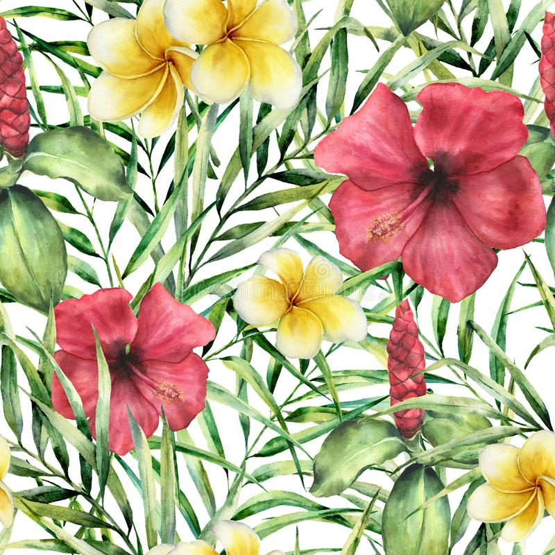 Watercolor tropical pattern with plumeria and hibiskus. Hand painted flowers with palm leaves isolated on white stock illustration