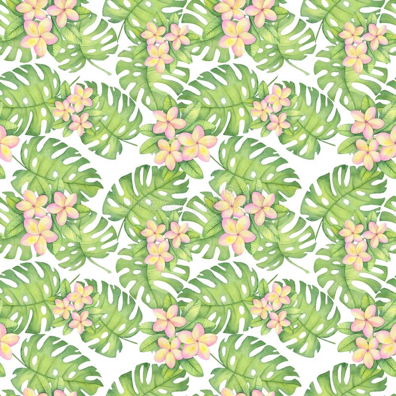 Watercolor tropical pattern, plumeria, leaves monstera Pattern. Watercolor illustration of tropical pattern, plumeria, leaves monstera Pattern. Drawing for royalty free illustration