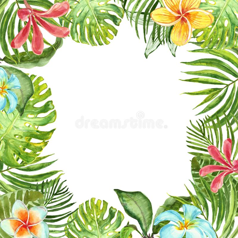Watercolor tropical plants frame with green exotic plants, leaves and flowers. Summer border design royalty free stock photos