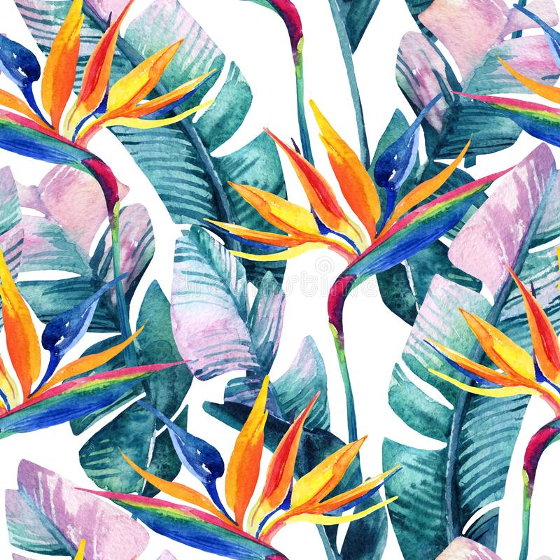 Watercolor tropical seamless pattern with bird-of-paradise flower. stock illustration