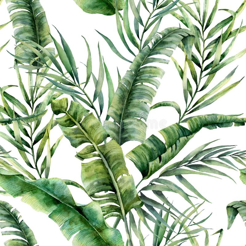 Watercolor tropical seamless pattern with coconut and banana palm leaves. Hand painted greenery exotic branch on white. Background. Botanical illustration for vector illustration