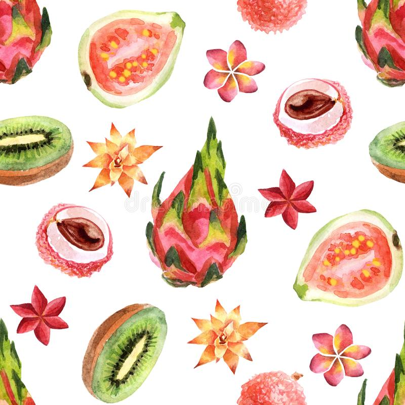 Watercolor tropical seamless pattern with pitahaya on a white background vector illustration