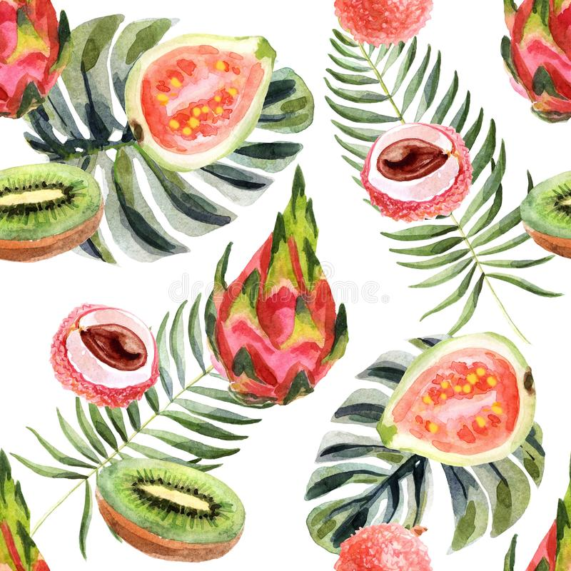 Watercolor tropical seamless pattern with pitahaya on a white background stock illustration