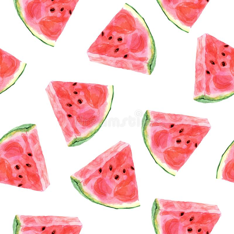 Watercolor tropical seamless pattern with watermelon on a white background royalty free illustration