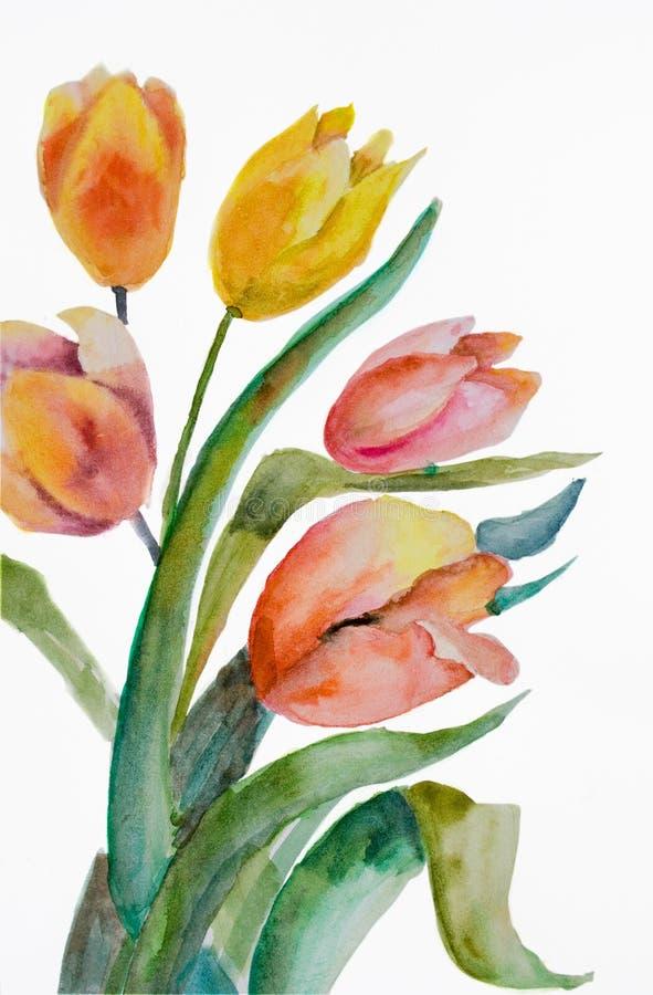 Watercolor Tulips flowers