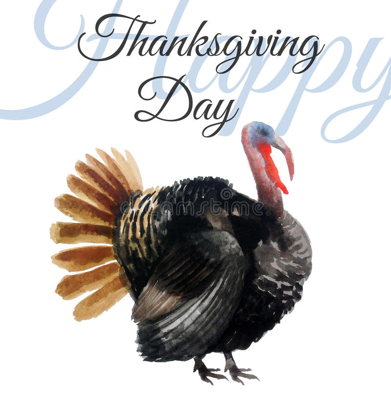 Watercolor turkey stock illustration