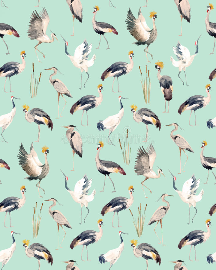 Watercolor vector african crane pattern vector illustration