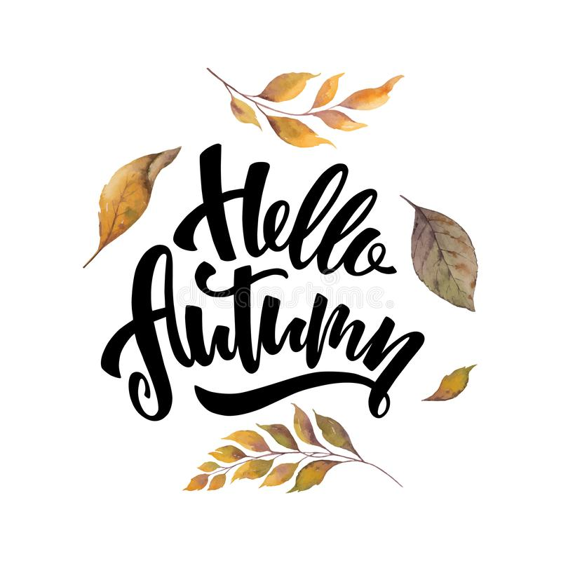 Watercolor vector card with hand lettering Hello autumn and leaves isolated on white background. royalty free illustration