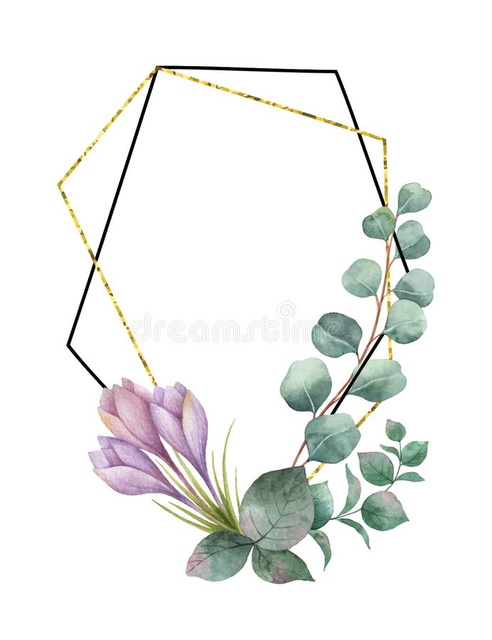 Watercolor vector composition from the branches of eucalyptus, purple flowers and gold geometric frame. Watercolor composition from the branches of eucalyptus vector illustration