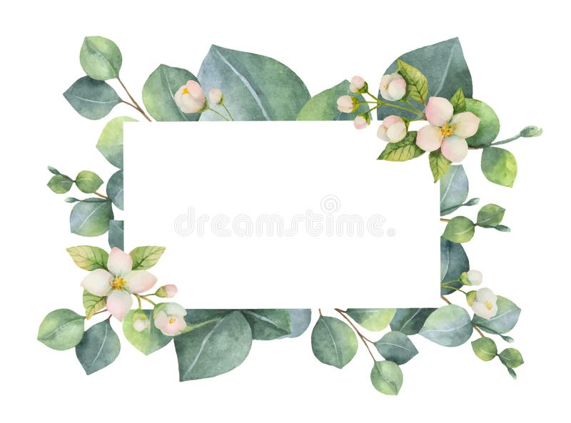 Watercolor vector green floral card with eucalyptus leaves, Jasmine flowers and branches isolated on white background. vector illustration