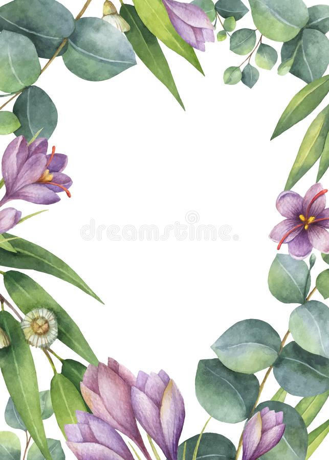 Watercolor vector green floral card with eucalyptus leaves, purple flowers and branches isolated on white background. royalty free illustration