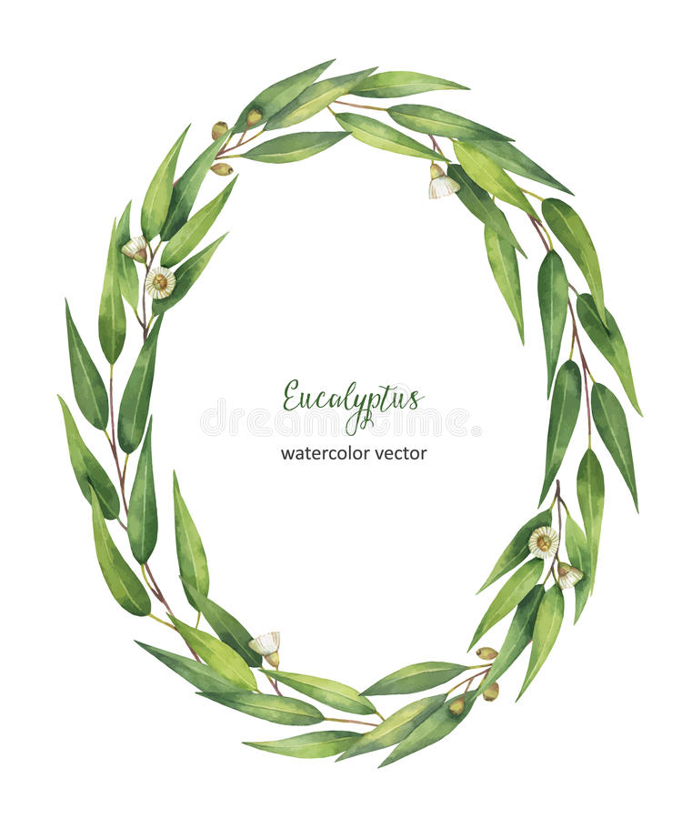 Watercolor vector oval wreath with eucalyptus leaves and branches. Healing Herbs for cards, wedding invitation, posters, save the date or greeting design royalty free illustration