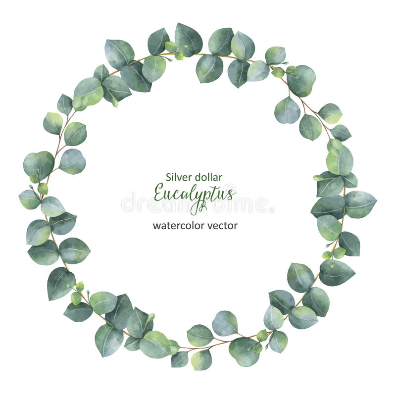 Watercolor vector round wreath with silver dollar eucalyptus. Healing Herbs for cards, wedding invitation, posters, save the date or greeting design. Summer