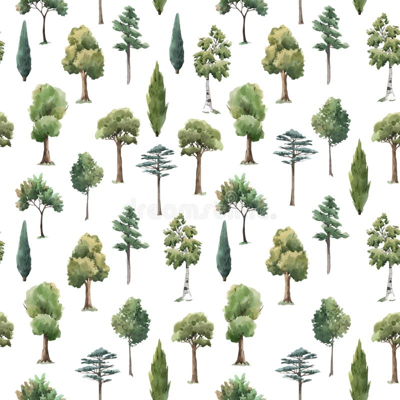 Watercolor vector tree seamless pattern forest oak fir birch, thuja linden baobab pine. Seamless vector pattern with watercolor forest trees oak fir birch, thuja royalty free illustration