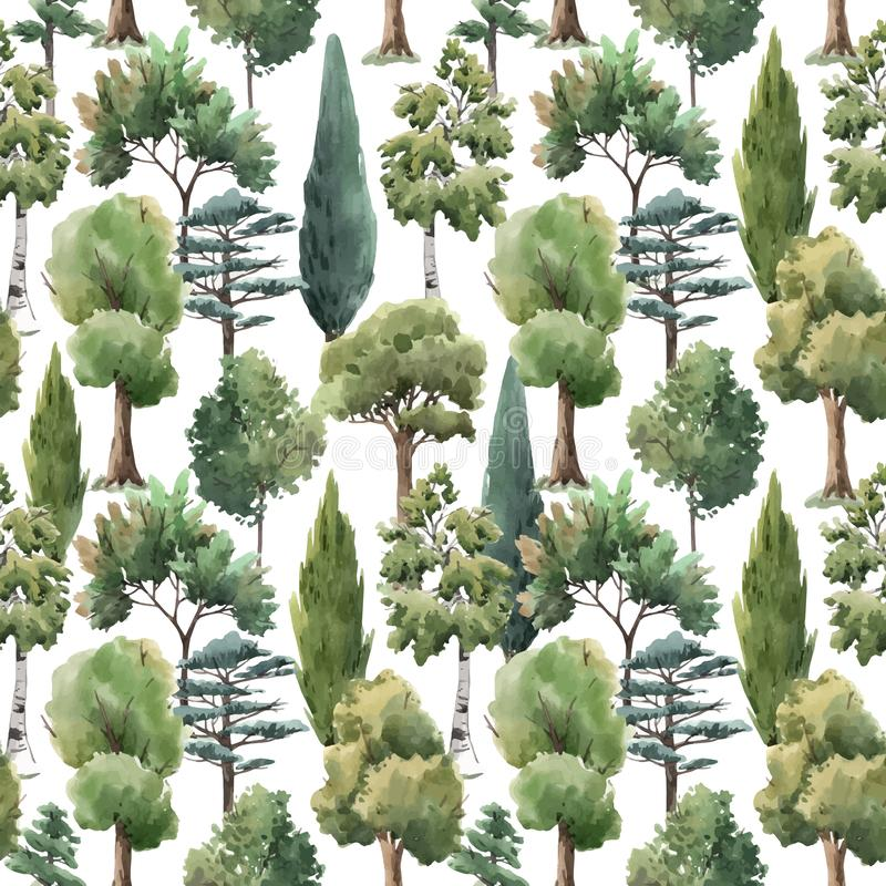 Watercolor vector tree seamless pattern forest oak fir birch, thuja linden baobab pine. Seamless vector pattern with watercolor forest trees oak fir birch, thuja vector illustration