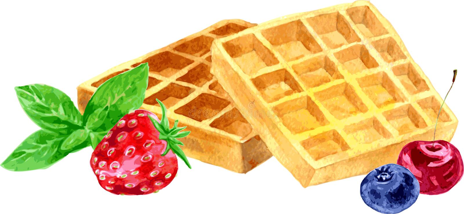 Watercolor vector wafers and berries stock illustration