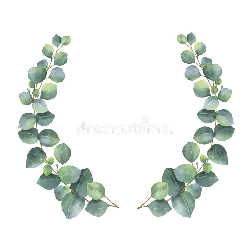 Watercolor vector wreath with silver dollar eucalyptus leaves and branches. royalty free illustration