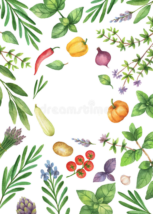 Watercolor vegetables and herbs isolated on white background. stock illustration