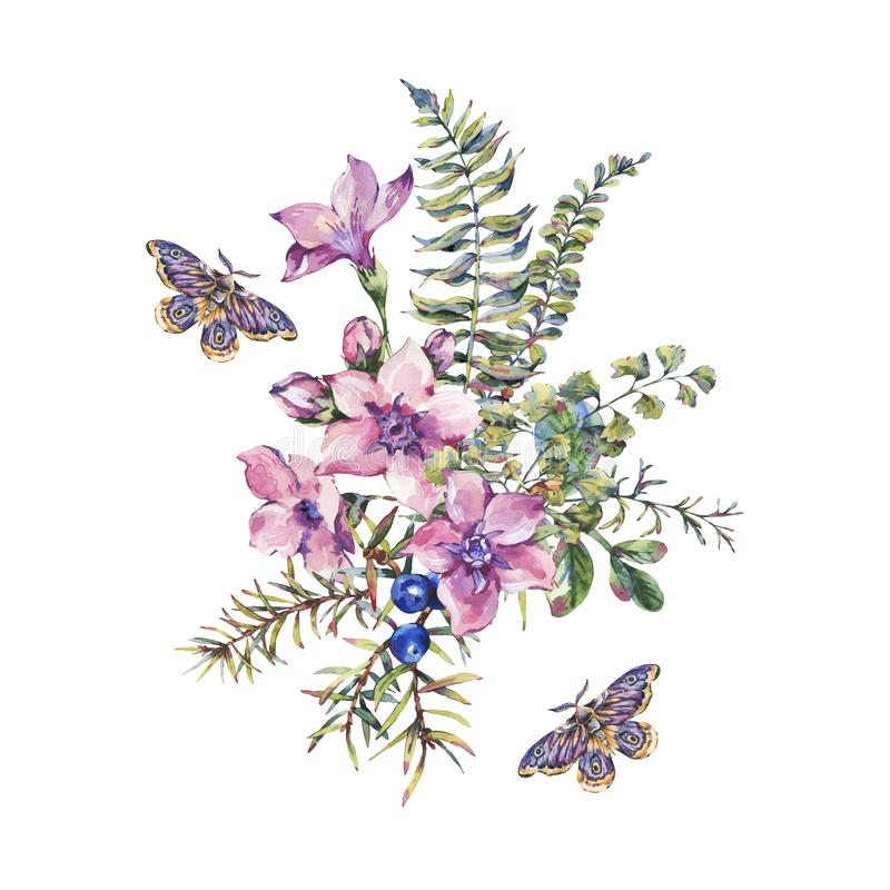 Watercolor vintage floral forest greeting card with berries, moth, fern, pink flowers. Natural illustration isolated on white background, design invitation royalty free illustration