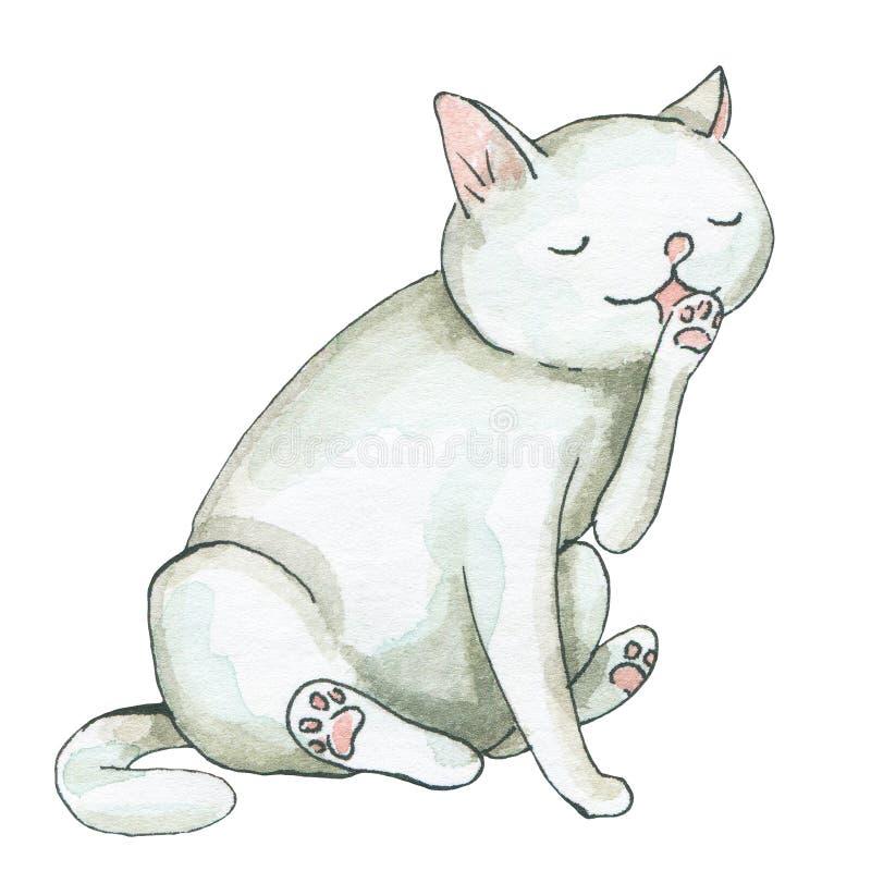 Watercolor white cat licks vector illustration