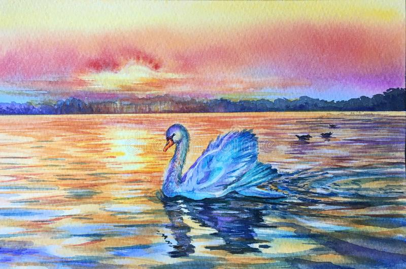 Watercolor white swan on blue lake water in sunset, sunrise. Swan reflection in water. Bird silhouette. Red, blue,yellow, purple. Horizontal view, copy-space royalty free stock photography