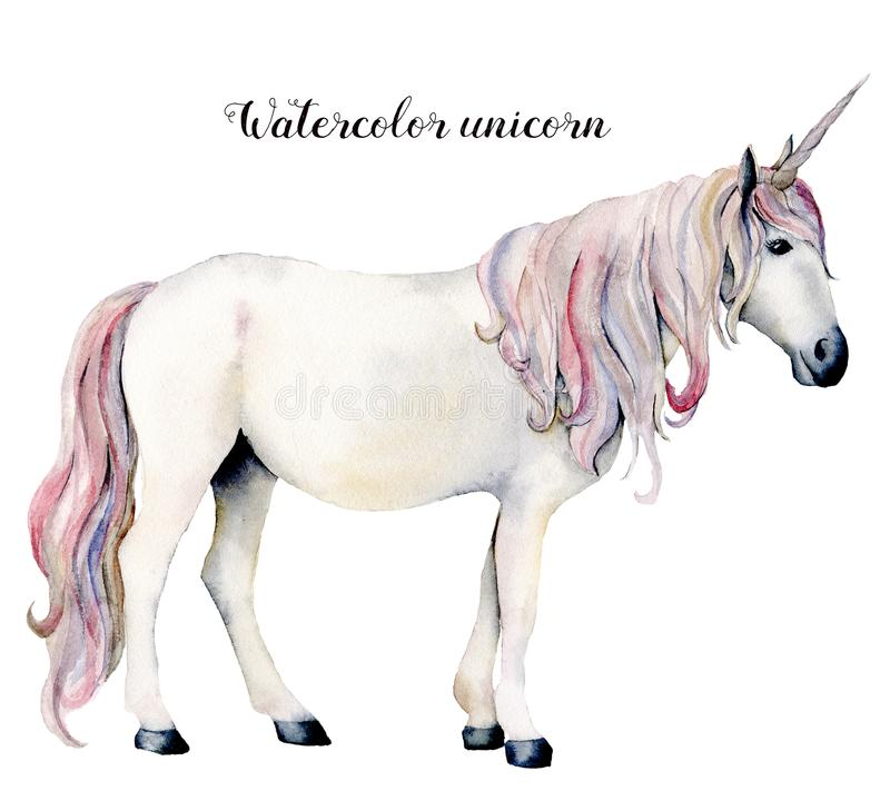 Watercolor white unicorn. Hand painted magic horse isolated on white background. Fairytale character illustration design royalty free illustration