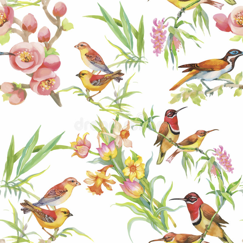 Watercolor Wild exotic birds on flowers seamless pattern on white background.  vector illustration