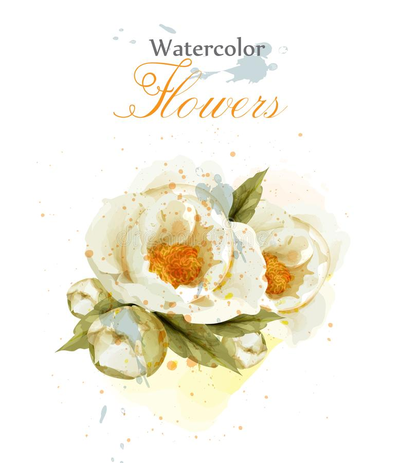 Watercolor wild rose flower blossom Vector. Vintage greeting, or wedding invitation. Summer floral decoration bouquets. Watercolor wild rose flower blossom vector illustration
