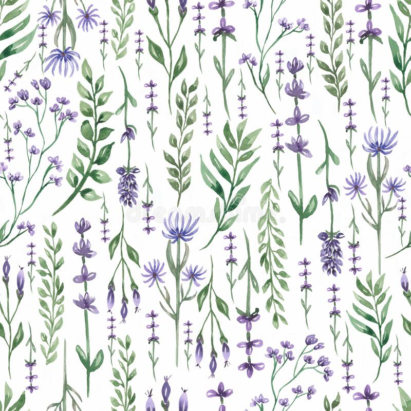 Free Watercolor  Wildflower Floral Pattern, Delicate Flower Wallpaper With Field Flowers , Meadow Wildflowers On White Background Stock Photo - 167764670