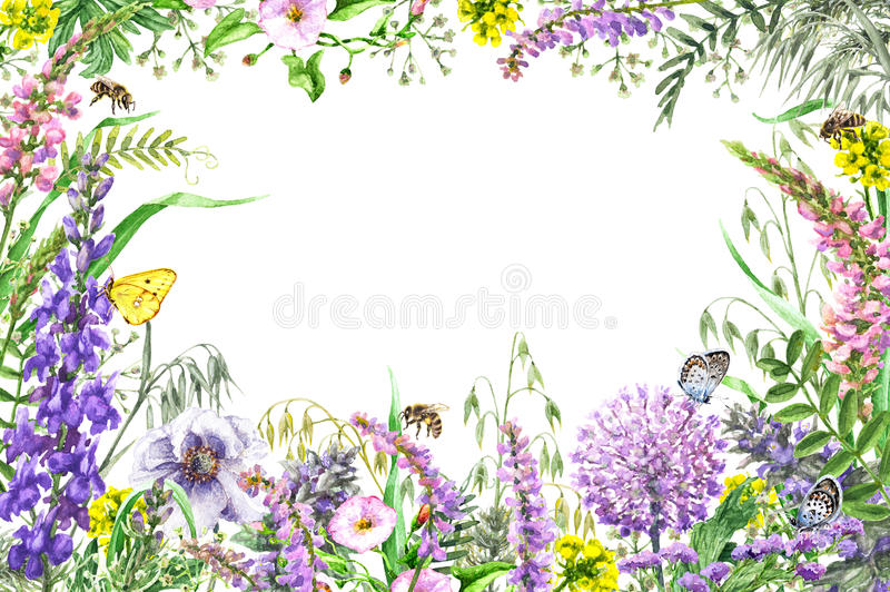 Watercolor wildflowers frame royalty free illustration
