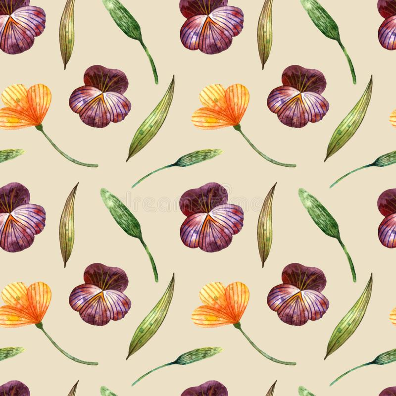 Watercolor wildflowers. Gentle seamless pattern with pansies, scissors and spikelets on a beige royalty free stock photo
