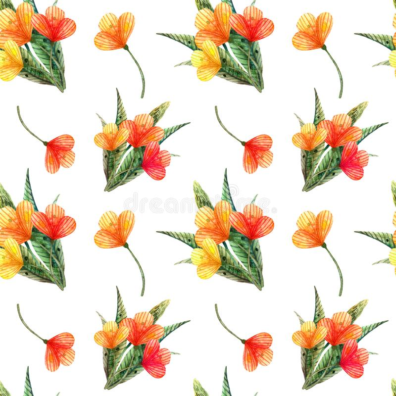 Watercolor wildflowers. Seamless pattern with a bouquet of orange flowers stock illustration