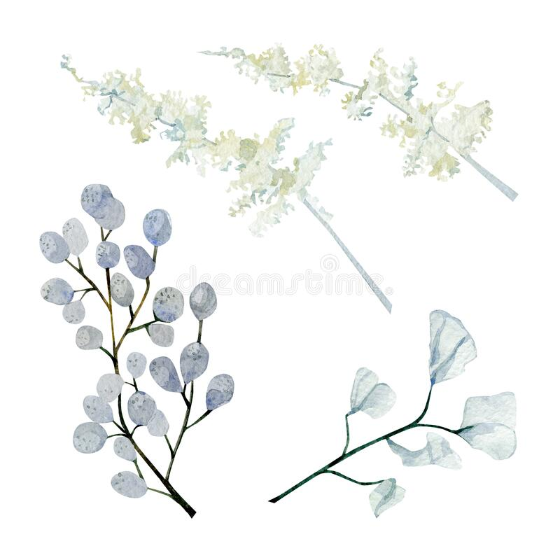 Free Watercolor Winter Branches, Leaves And Berries. Botanical Plant, Fall Floral, Dried Flowers And Dusty Wildfloral Elements Royalty Free Stock Images - 200942899