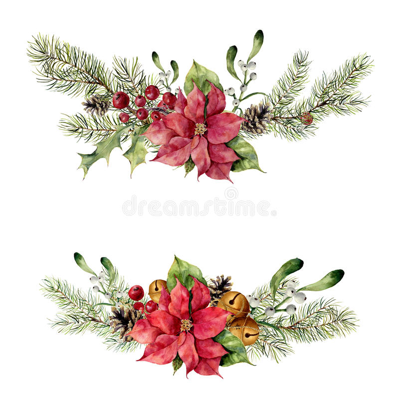 Watercolor winter floral elements on white background. Vintage style set with christmas tree branches, bells, holly. Mistletoe, poinsettia flower, leaves royalty free illustration
