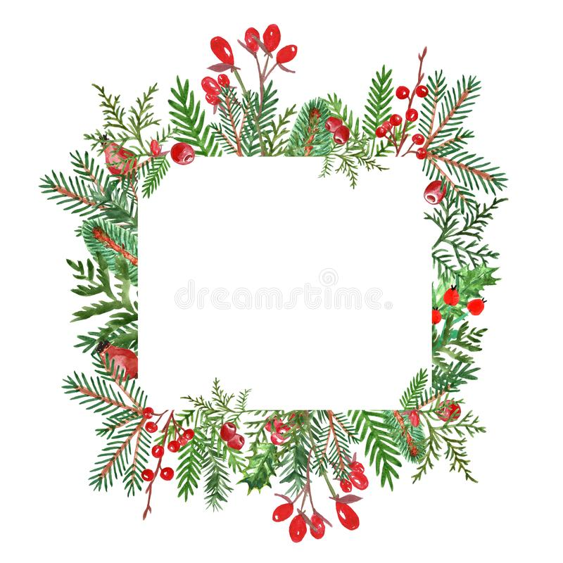 Watercolor winter greenery frame for Christmas design. Hand painted evergreen spruce and pine tree branches with red berries. Holiday winter banner with royalty free stock images